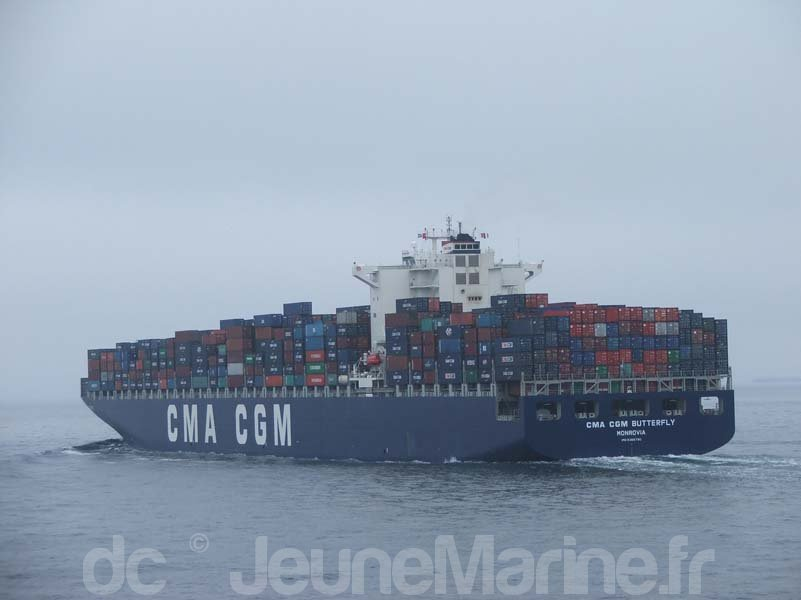 cma-cgm-butterfly-5