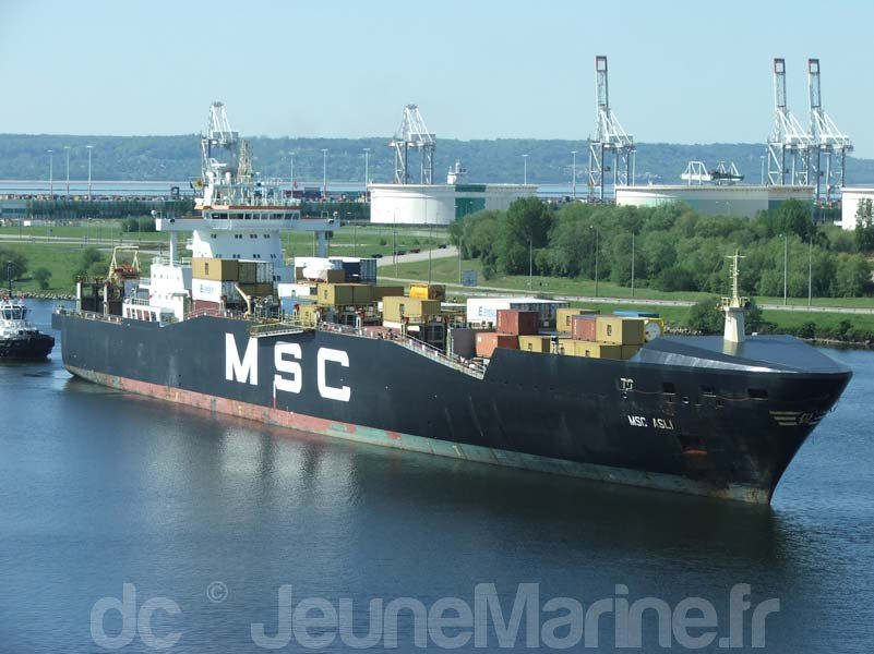 msc-asli-9