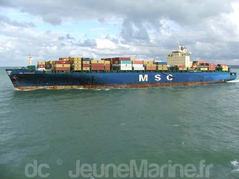 msc-fortunate-4