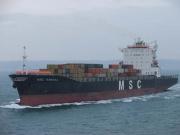 msc-sandra-2